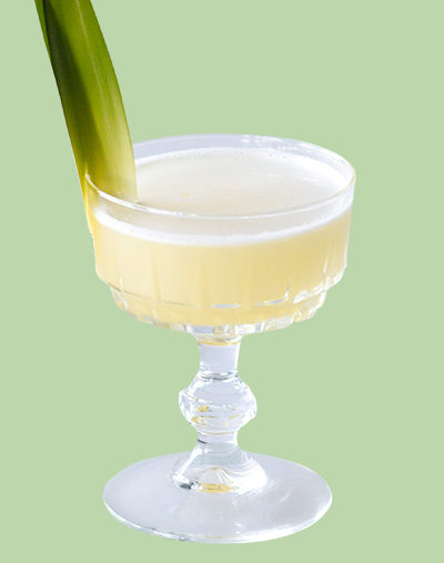 ORIGINAL PISCO PUNCH
